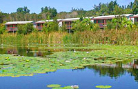 Cottages across lagoon